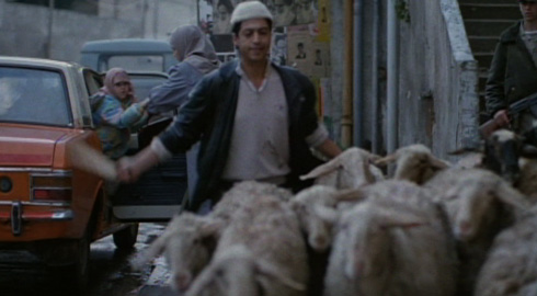According to the movie, herders frequently bring their sheep to pasture on the streets of Tehran.